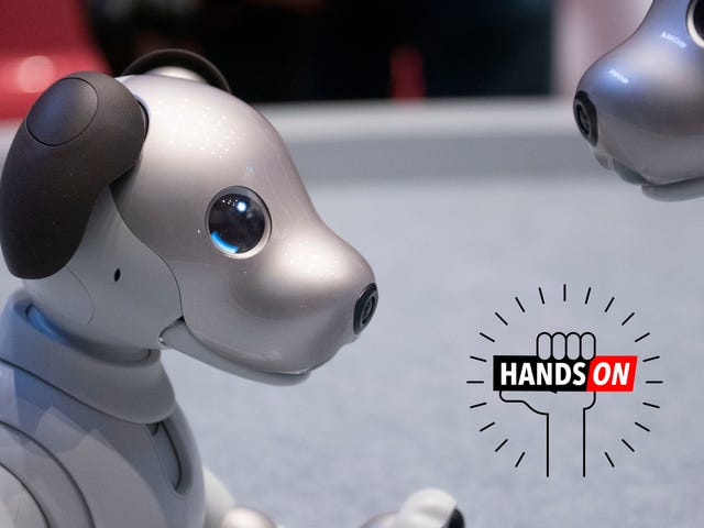 Sony's Aibo Is One Dumb Dog (So Far...)