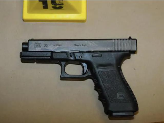 Undersøgelsen finder ud af, at flere pistol ejere betyder flere indenlandske drab