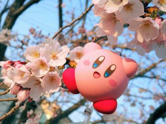 Kirby Was Made For Spring In Japan