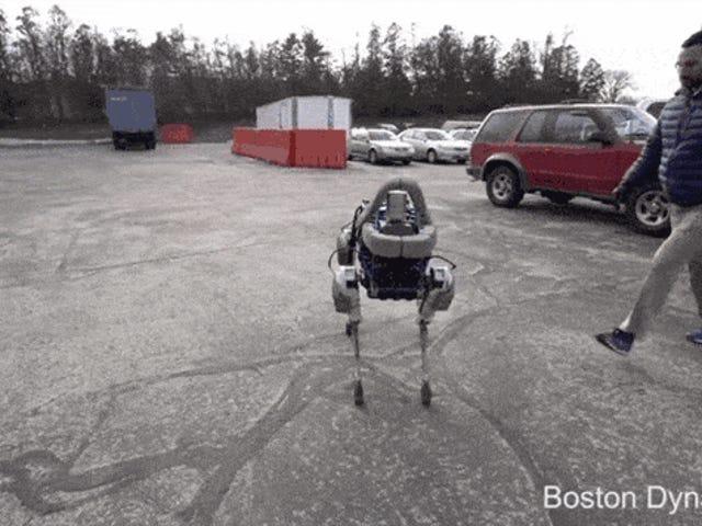こんにちは男、多分そのロボット犬を蹴らないでください