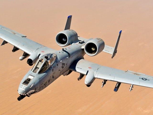 Lintulakko aiheutti ilmavoimien lentokoneen pudottaessa vahingossa kolme harjoituspommia Floridaan