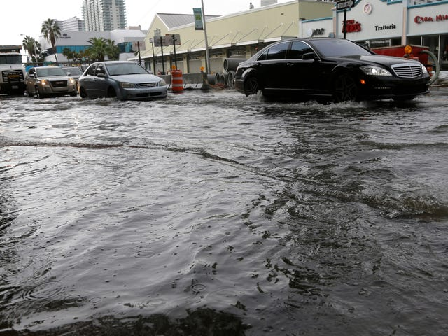 마이애미 주변의 해수면이 다른 지역보다 훨씬 빠른 이유는 무엇입니까?