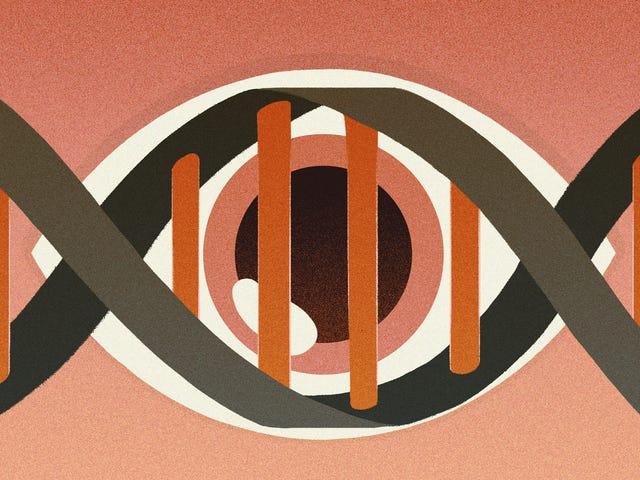 Como uma briga legal entre dois caras ricos poderia mudar como pensamos sobre o DNA