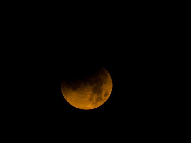 Super Blue Blood Moon!