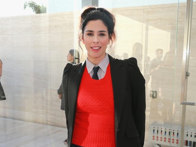 An Exchange Between Sarah Silverman and a Follower Shows That Twitter Doesn't Have to Be Terrible Always