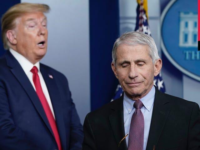 Georgia 'Mở cửa lại vào thứ Sáu và Trump có vẻ bối rối về cách cảm nhận về nó