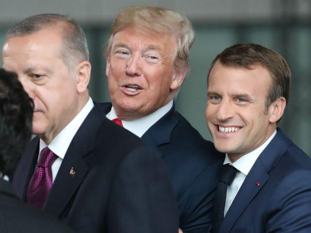 도널드 트럼프는 모든 것을 사랑합니다. Emmanuel Macron은 프랑스어로 프랑스어를 이해할 수 없다고 말합니다.