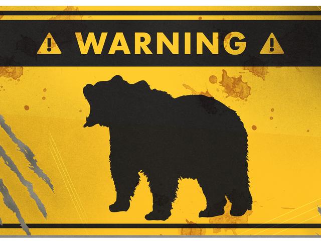 Hvordan overleve en bjørnangrep