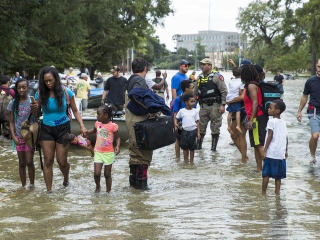 Il segretario di Stato del Texas smette l'uragano Harvey aiuto dal Canada e chiede preghiere invece: Report