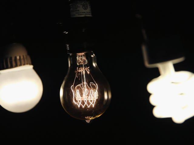 ट्रम्प के ऊर्जा विभाग ने अधिक कुशल लाइटबुल के अत्याचार से हमें बचाने के लिए झपट्टा मारा