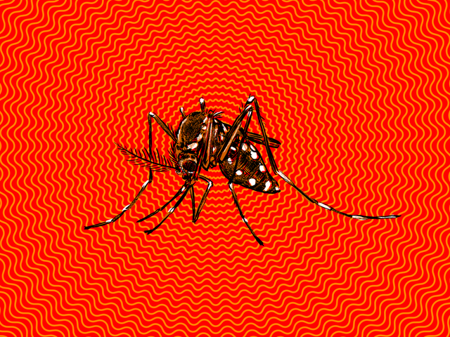 How Worried Should You Be About the Zika Virus?