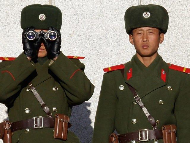De finder en mærkelig parasit i maven på ørkenen, der slap fra Nordkorea