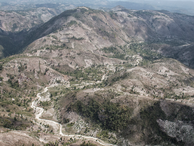 Has Haiti Lost Nearly All of Its Forest? It's Complicated