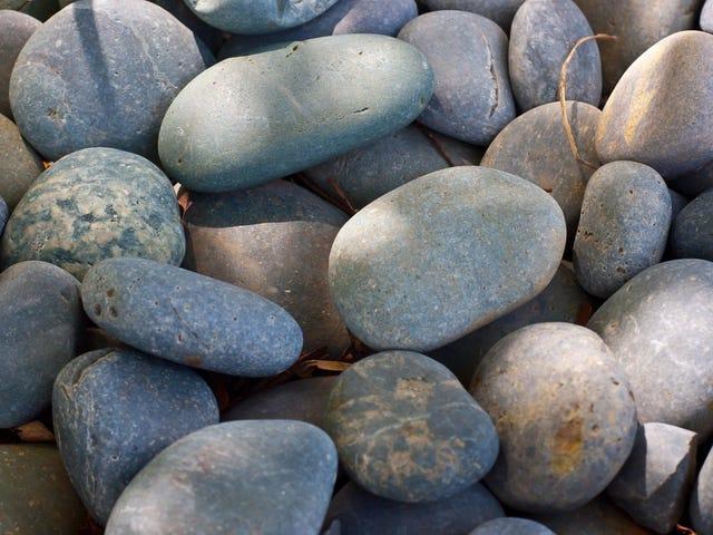 Les fans de Jurassic World Evolution sont très excités à propos des roches
