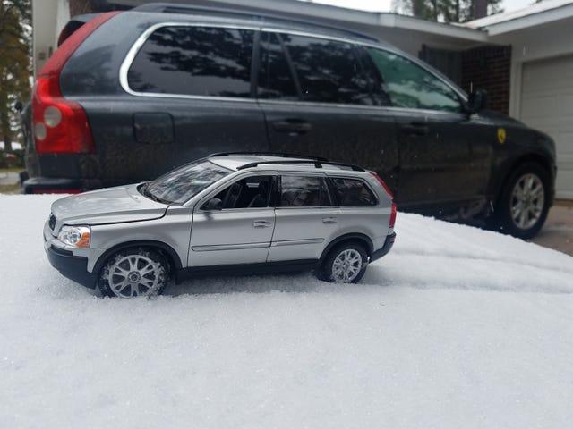Moose love the snow