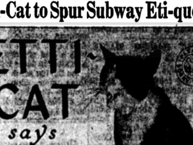 The Star of the MTA's 1962 Campaign for Subway Manners: A Damn Cat
