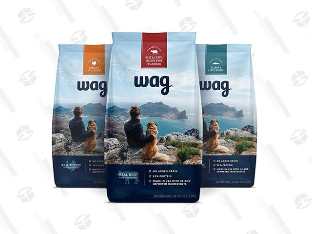 Amazon Really Makes Everything, And You Can Take 40% Off Its New Dog Food