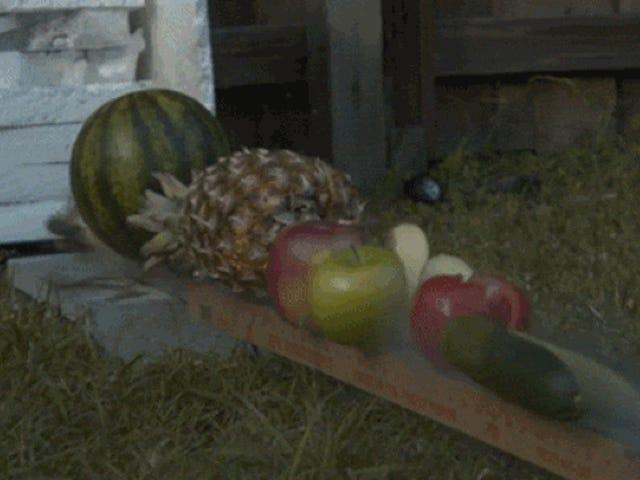 Fruit Ninja a lo mejor: ata un cuchillo a un cohete para cortar fruta