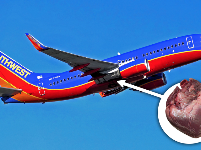 Someone Left a Human Heart on a Southwest Flight and No One Knows Who It Was For [Update: Heart Was Left By Courier]