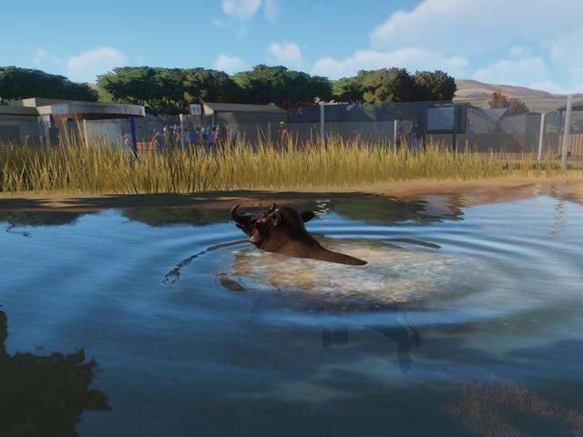 Planet Zoo is currently in a public beta for players who pre-ordered the deluxe edition of the game