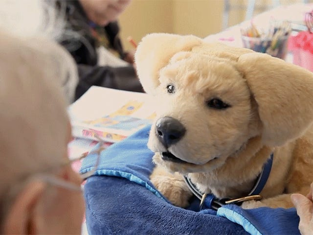 Vi skal snakke om denne Robo-Dog Companion, at Jim Hensons Creature Shop hjalp design