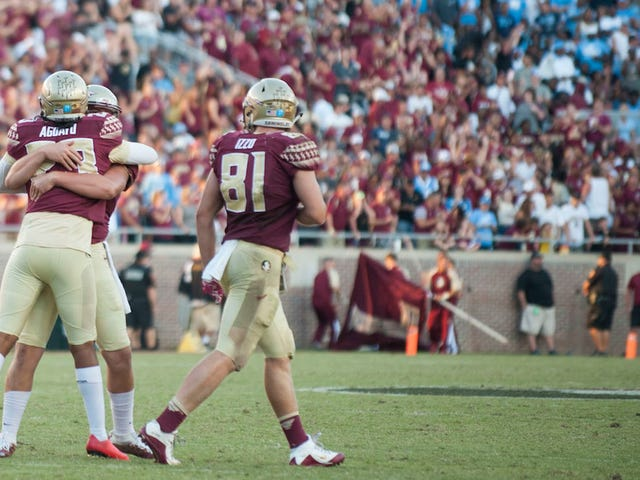 Report: Florida State Football Players Were Suspects In Frat Turtle's Gruesome Death