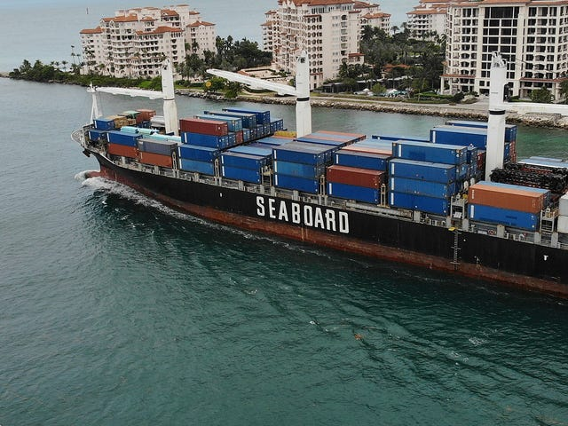 More Than Half a Million Corals Died to Bring Bigger Ships Into Miami Port