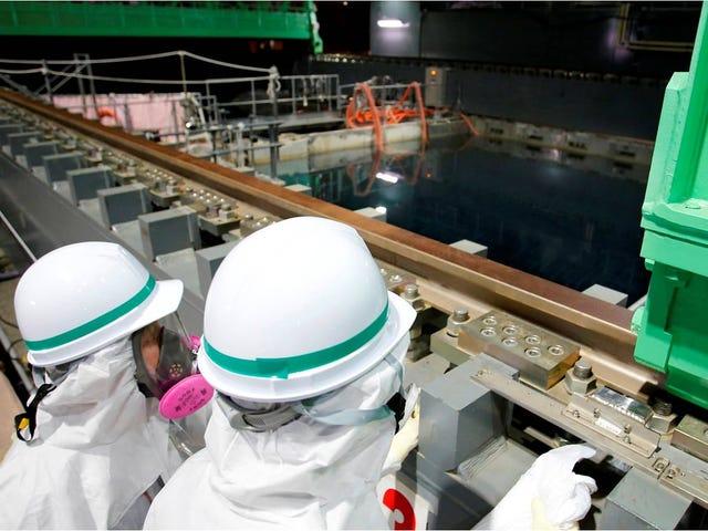 Detectan nueva fuga en Fukushima 70 veces más radioactiva de lo normal