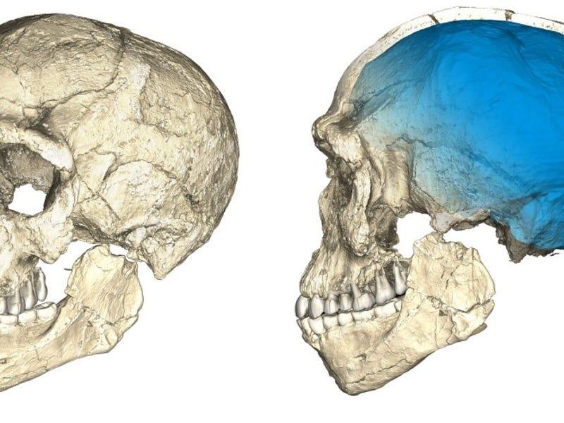 Termoluminescens dating i arkeologi