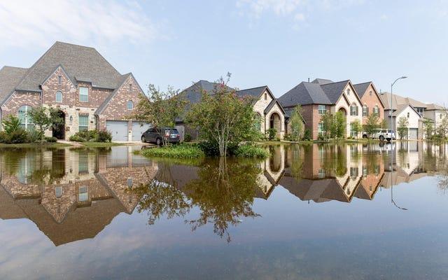 Obtenez une assurance contre les inondations maintenant avant que les taux mensuels ne changent en octobre