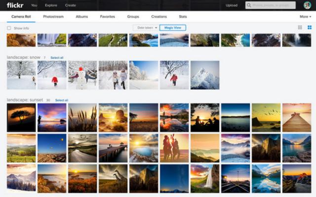 Alat Pengenal Gambar Flickr Membuat Beberapa Kesalahan Yang Memalukan