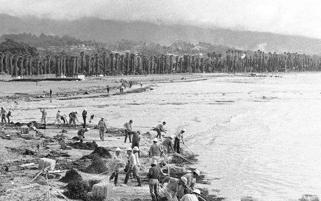 नॉट अगेन: कैसे 1969 के तेल रिसाव ने सांता बारबरा तट को तबाह कर दिया
