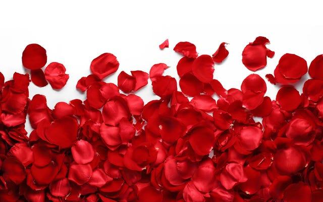 Un parfum qui sent la rose, mais qui est en fait fabriqué à partir de levure