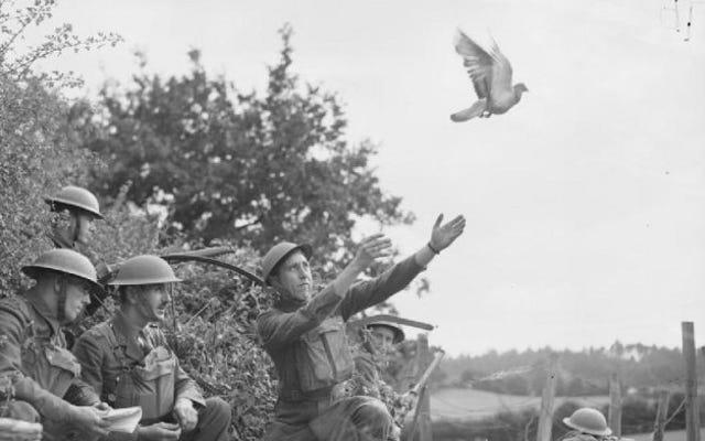 İkinci Dünya Savaşında Her İki Tarafın da Kullandığı 8 Düşük Teknolojili Silah ve Taktik