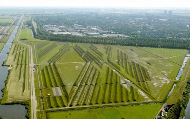 Как этот простой ландшафтный проект успокаивает шум аэропорта