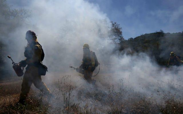 趣味のドローンが消防士の山火事を消そうとする試みを脱線させた