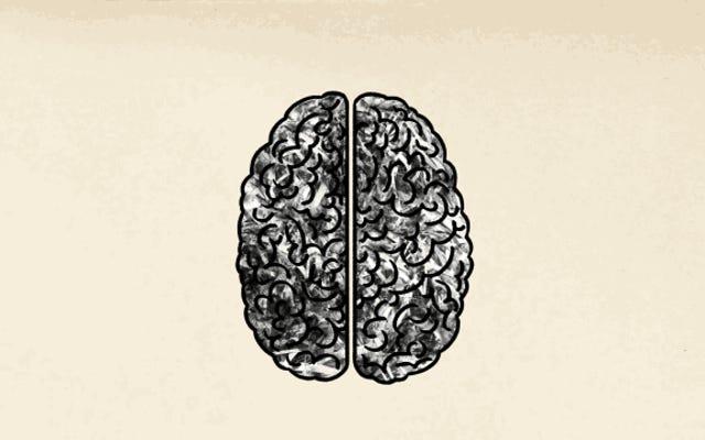 एकाधिक भाषाएँ सीखने से आपके मस्तिष्क को क्या लाभ होते हैं?