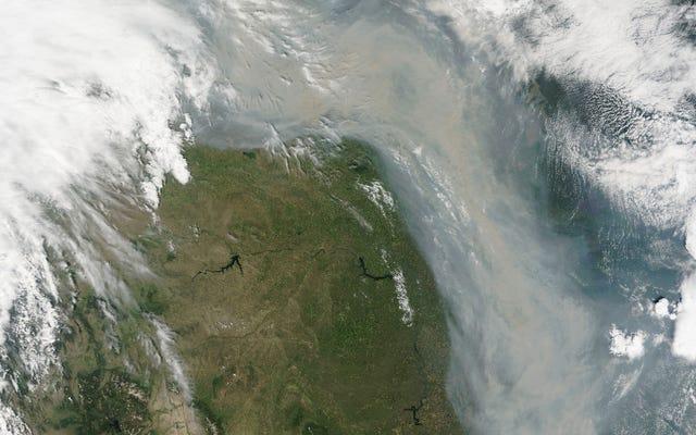Dym z kanadyjskich pożarów wlewa się do Stanów Zjednoczonych jak rzeka