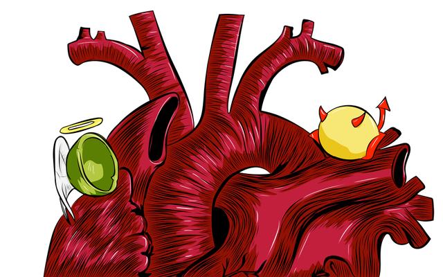 ほとんどの人はコレステロールをすべて間違っています