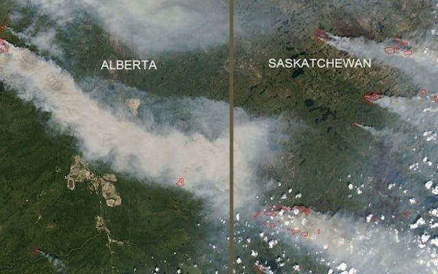 山火事からカナダを救った方法(1つの小さな島)