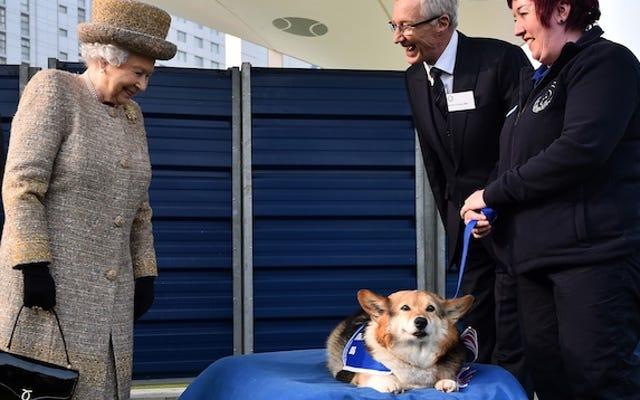 女王はコーギーの収集を終え、コーギーを置き去りにしたくない