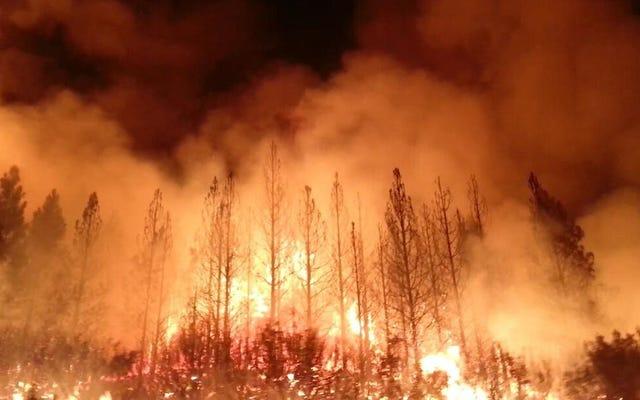 İklim Değişikliği Dünyayı Ateşe Veriyor