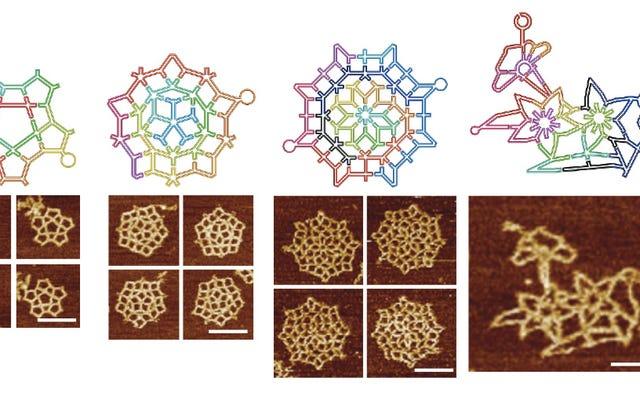 Metode Origami DNA Baru Menciptakan Struktur Molekul yang Luar Biasa Kompleks