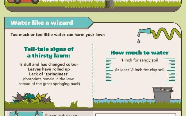 このグラフィックは、芝生を緑に保つためのヒントと完全なカレンダーを提供します