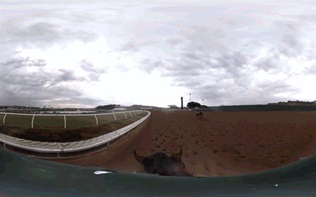 Это 360-градусное видео GoPro - ваш единственный шанс оседлать американского фараона