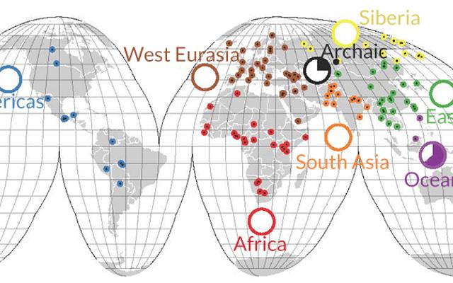 Antik İnsanların Şimdi Sahip Olduğumuzdan Daha Fazla DNA'sı Var