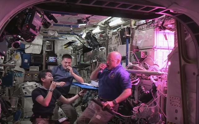 Astronot ISS Baru Saja Makan Selada Pertama yang Tumbuh di Luar Angkasa!