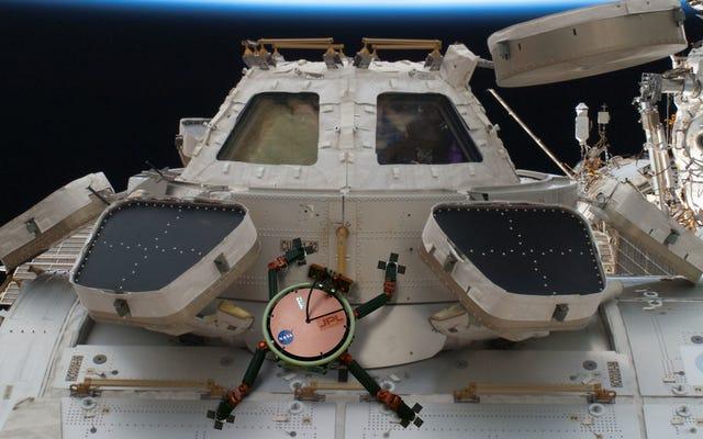 NASAのGecko接着剤は宇宙の真空に固執することができます