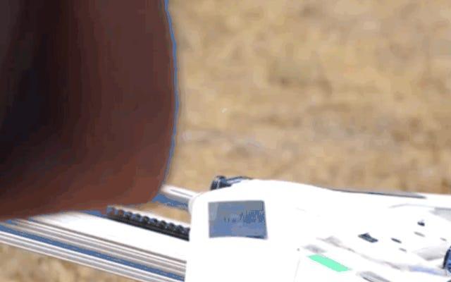 史上最大のドローンスウォームが空を飛ぶのを見る