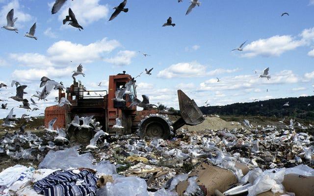 La eliminación de desechos en los vertederos de EE. UU. Se ha subestimado en un 115%